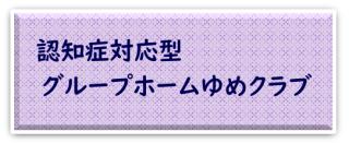 Gゆめ30.8